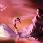 Swan Lake 2 by shall