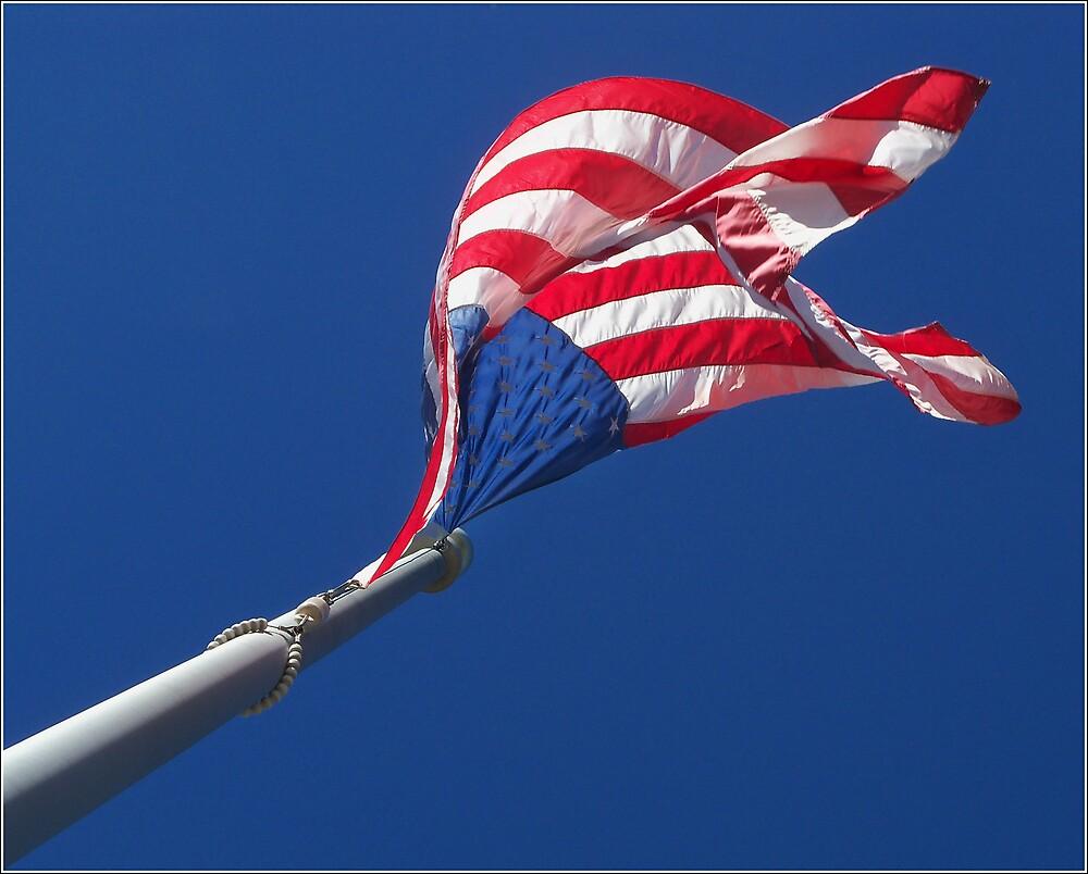Flag 1 by saripin