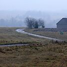 Farmstead in misty day in autumn by Antanas