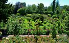 Monet's Gardens of Giverny  by Imagery
