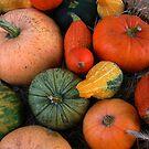 Pumpkins by ienemien