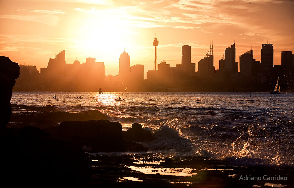 Golden - Sydney Harbor by Adriano Carrideo