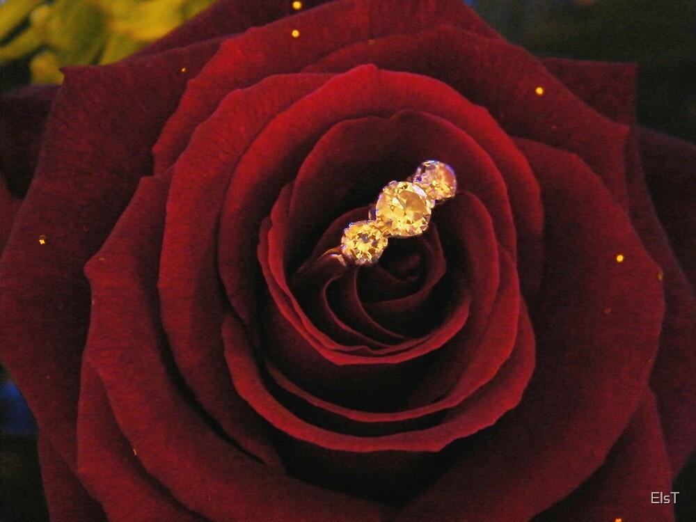 Sparkling Rose by ElsT