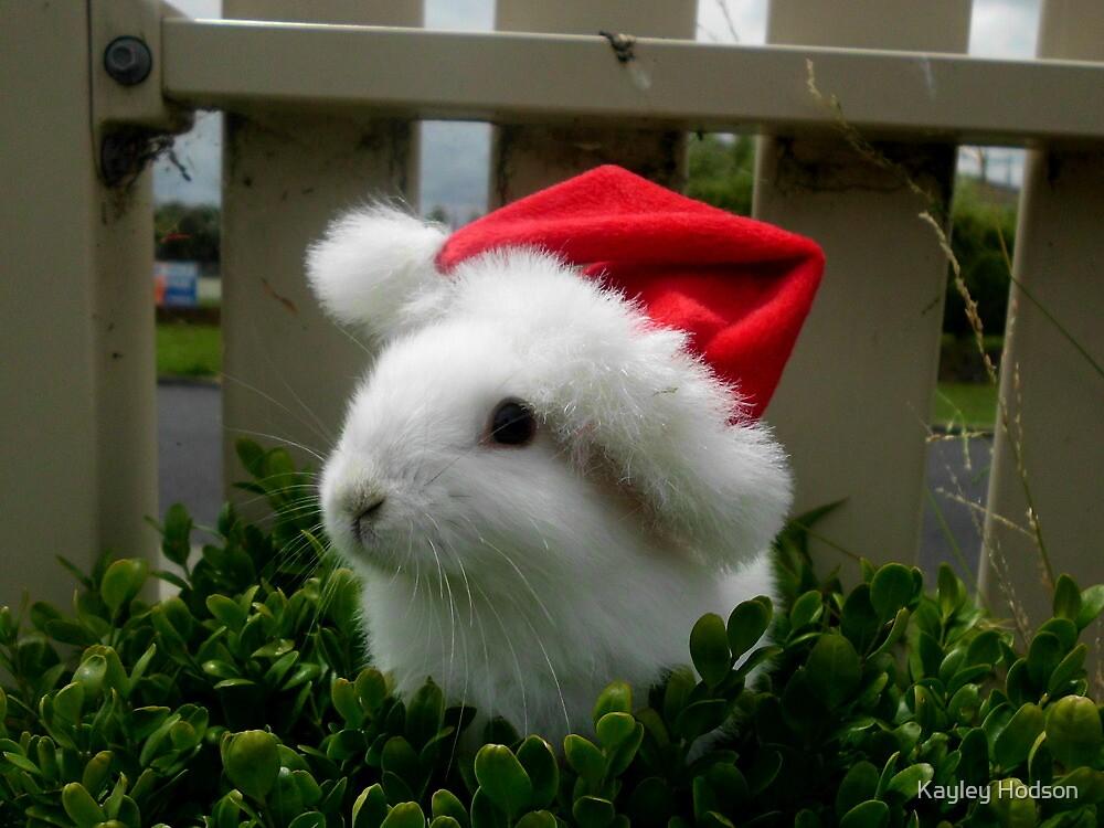 Merry Christmas :) by Kayley Hodson