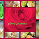 Merry Christmas Rose Collage by debbiedoda