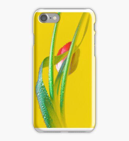 LOVELY TULIP. iPhone Case/Skin