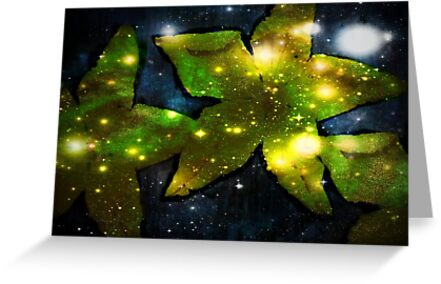 when stars were born... by mariatheresa