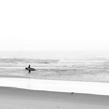 Surfing Birds by lucadou