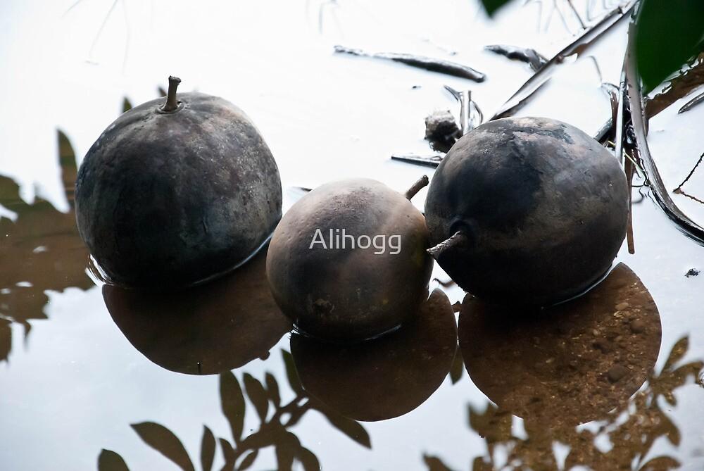 Untitled by Alihogg