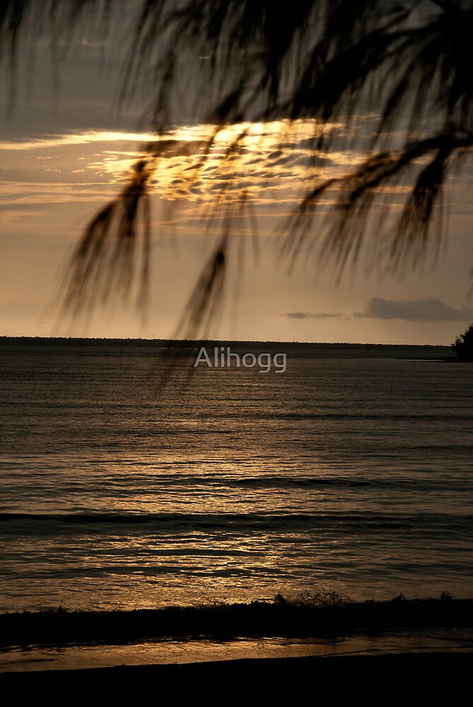 Darwin Sunset by Alihogg