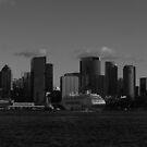 Sydney by Lionelbush