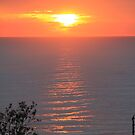 Sunrise by Lionelbush