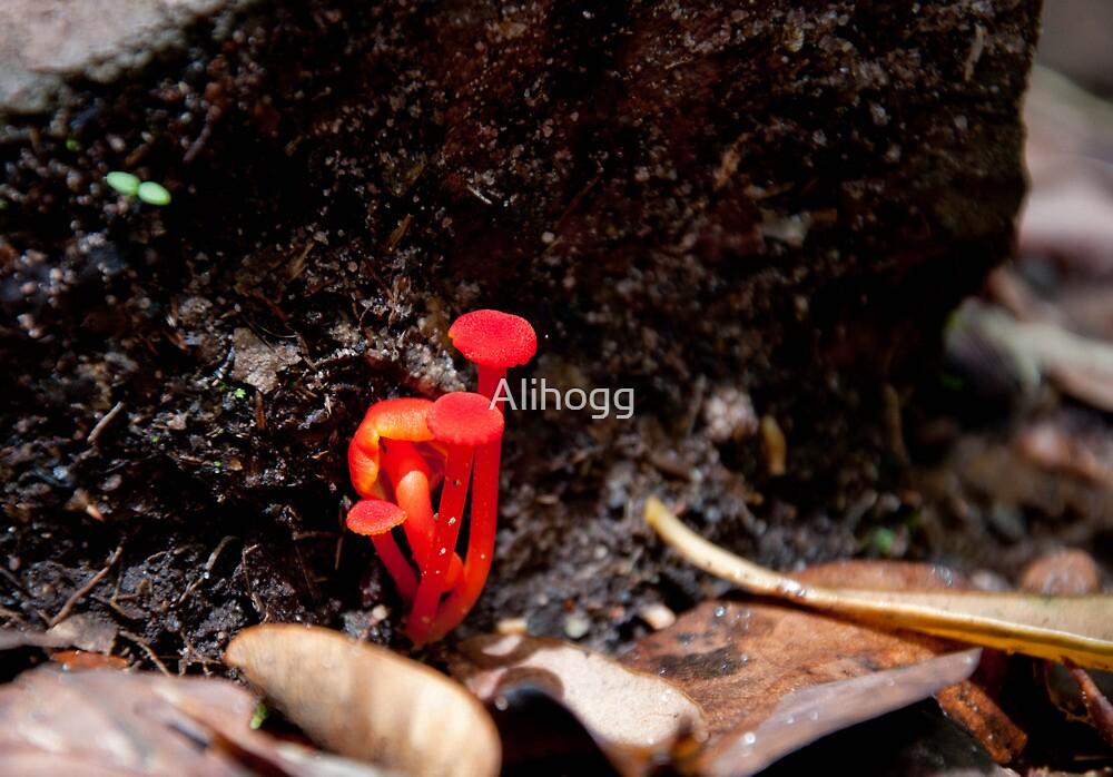 Electrifying Fungus by Alihogg