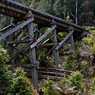 Rail Bridge, Tasmania by Karen Stackpole