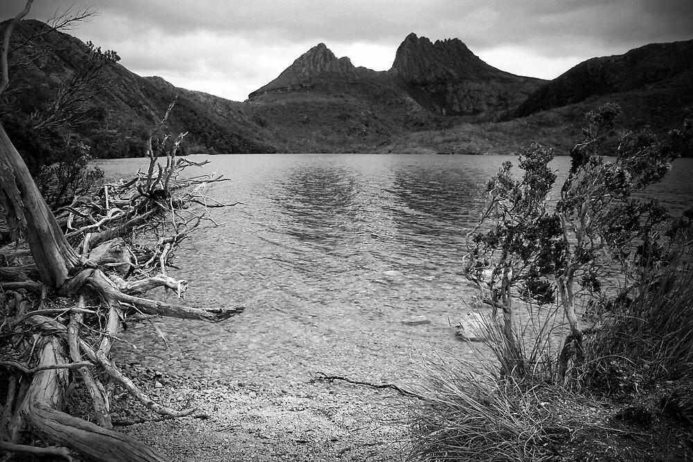 Cradle Mountain by Rob Chiarolli