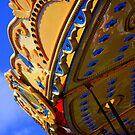 Carousel by Fiona Gardner