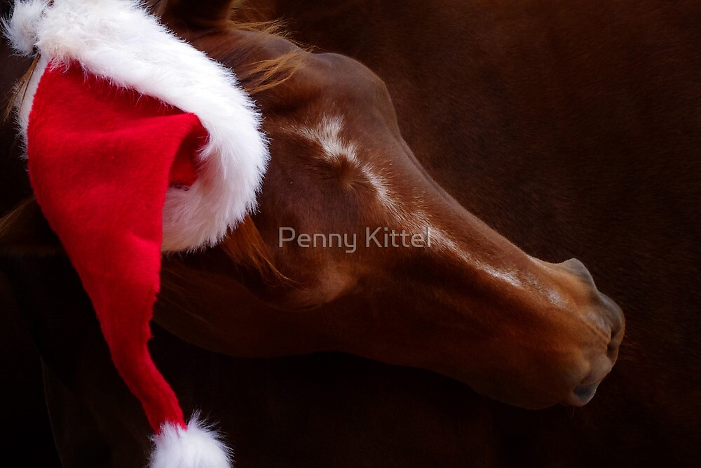 Russet Christmas by Penny Kittel