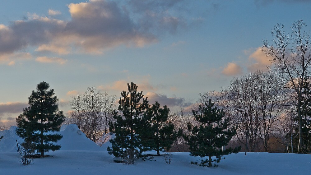 snow cones by BobSF