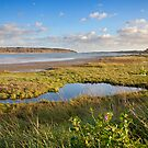 Banks of the Orwell river by Ian Merton