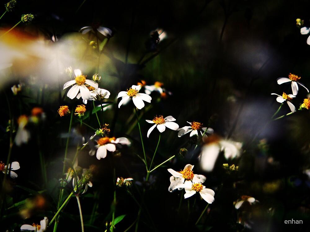 Like a dream by Van Nhan Ngo