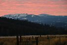 Whitney - Sunset on Greenhorn Peak by Betty  Town Duncan