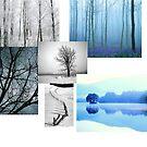 Winterland by Richard Murch