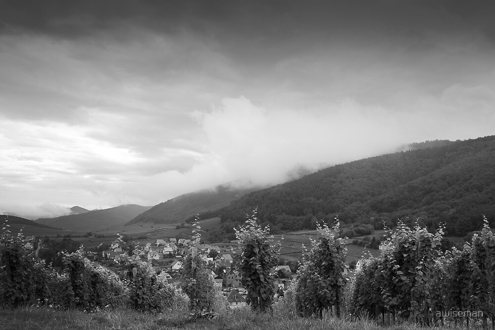 Village in the Vines by awiseman
