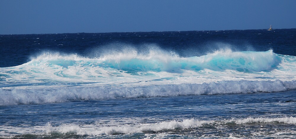 Kaui Surf by electro