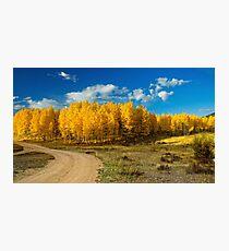 Fall Rural Roads Photographic Print