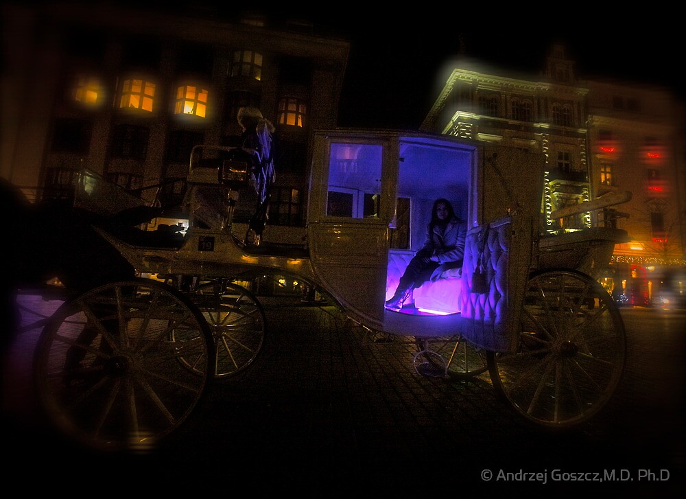 Your Highness Evita KittyCat . Evita KittyCat & Brown Sugar Magic Cab .  by © Andrzej Goszcz,M.D. Ph.D