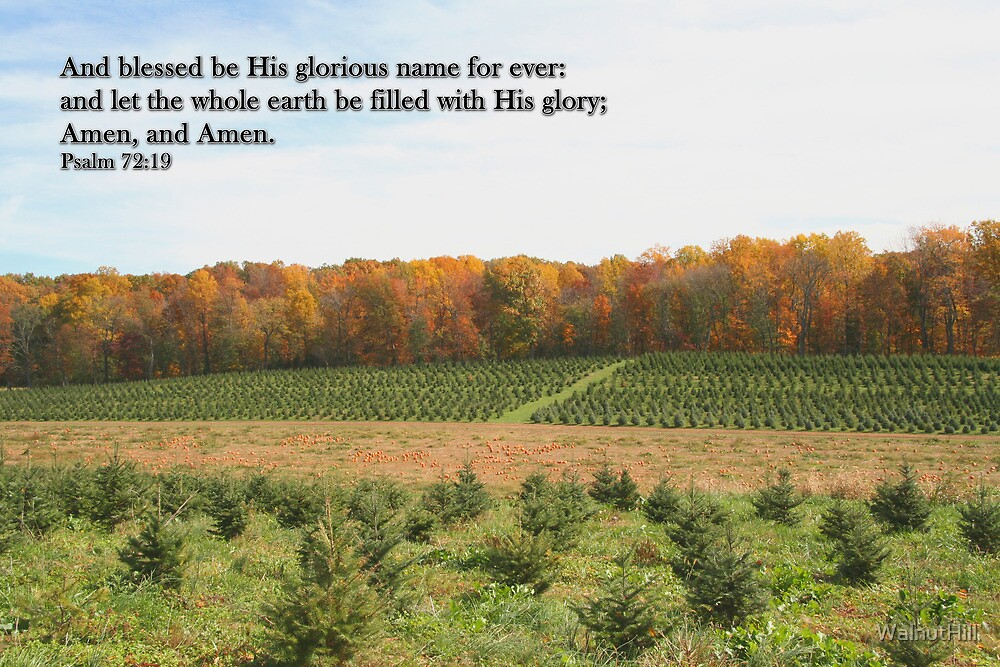 Let the whole earth be filled with His glory by WalnutHill
