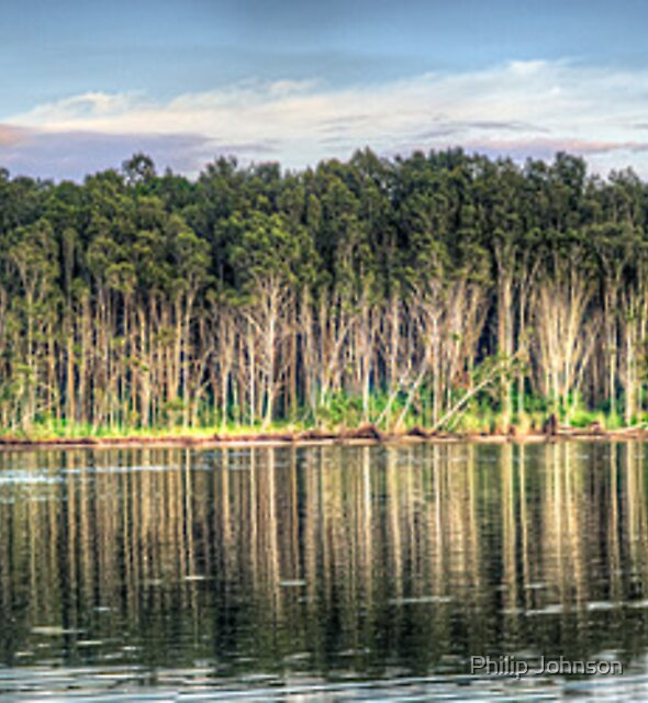 Tree Reflections - Narrabeen Lakes, Sydney Australia - The HDR Experience by Philip Johnson