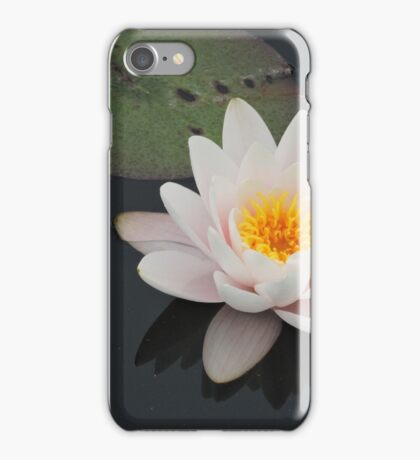 Peaceful Waterlily iPhone Case/Skin