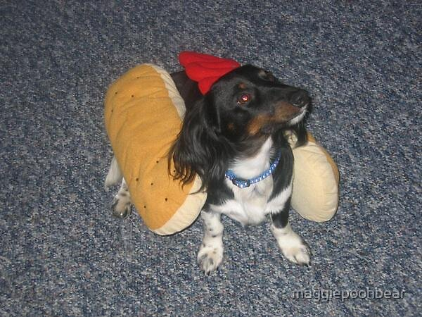 Benny the hot dog by maggiepoohbear
