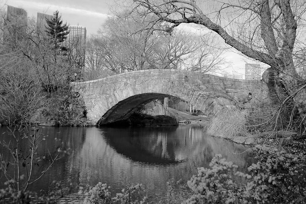 The Gapstow Bridge by photographist