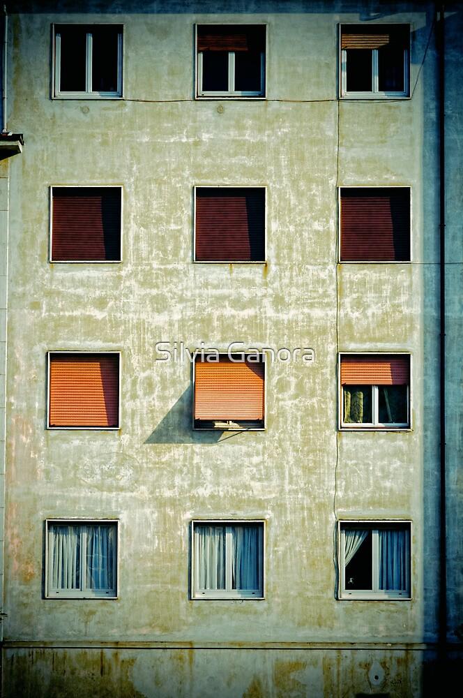 Twelve windows by Silvia Ganora
