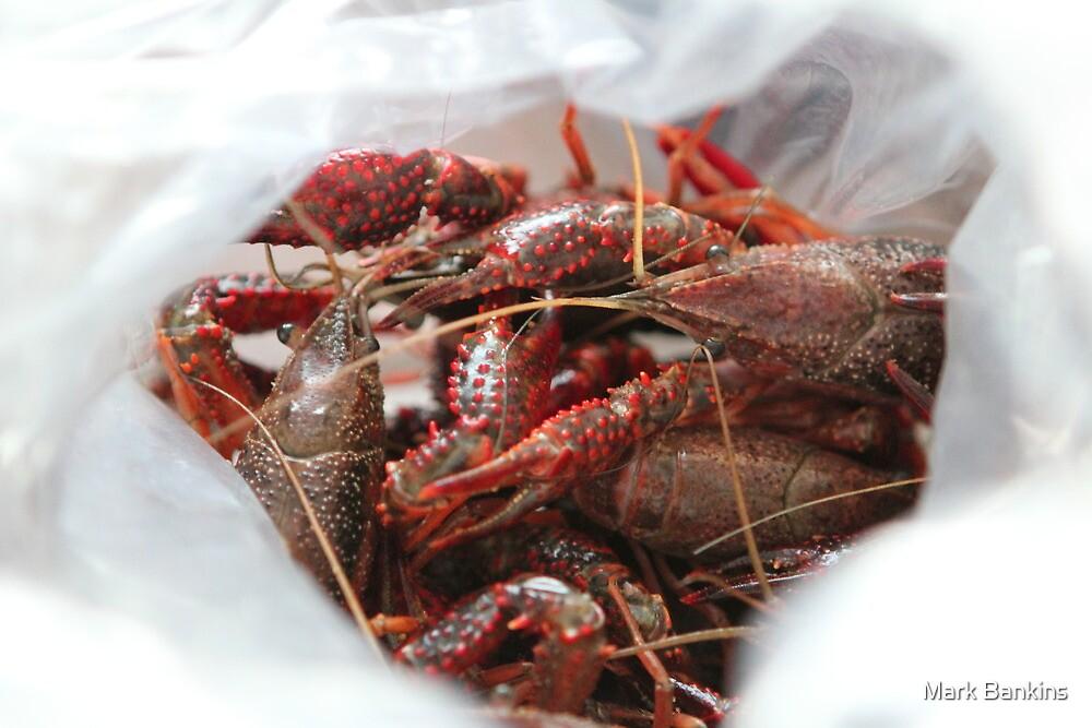 Crawfish by Mark Bankins