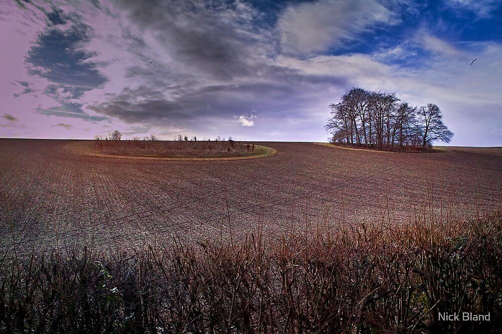 Penn Landscape by Nick Bland