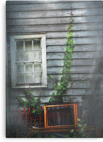 Mr. Simmons' Window by Patito49