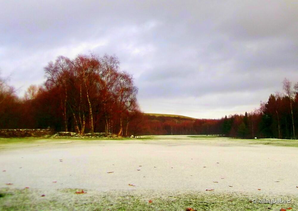 Snowy Fields by shelleybabe2