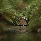 Boat Shed, Alfred Nicholas Gardens, Dandenong Ranges by Kylie Reid
