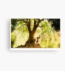 Handstand by the tree Canvas Print