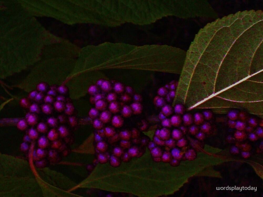 Purple Peas by wordsplaytoday