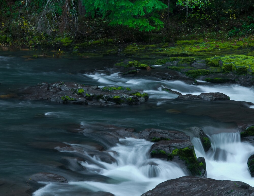 Waterfall, Steamboat Creek by Lee LaFontaine