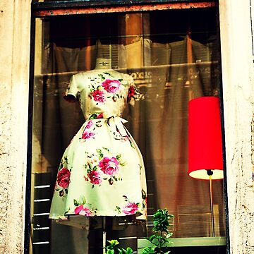 Dress in the Window by oddoutlet