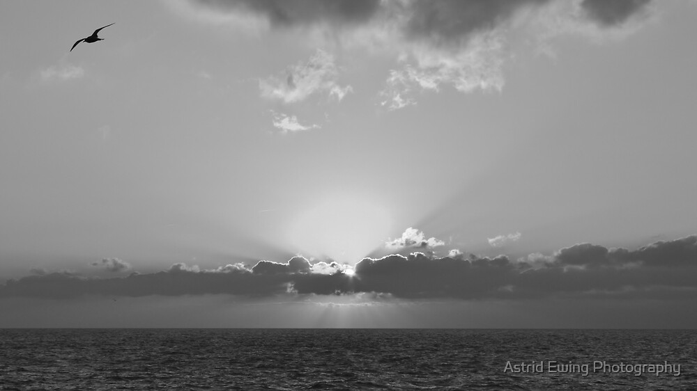 Brighton Sunset Mono by Astrid Ewing Photography