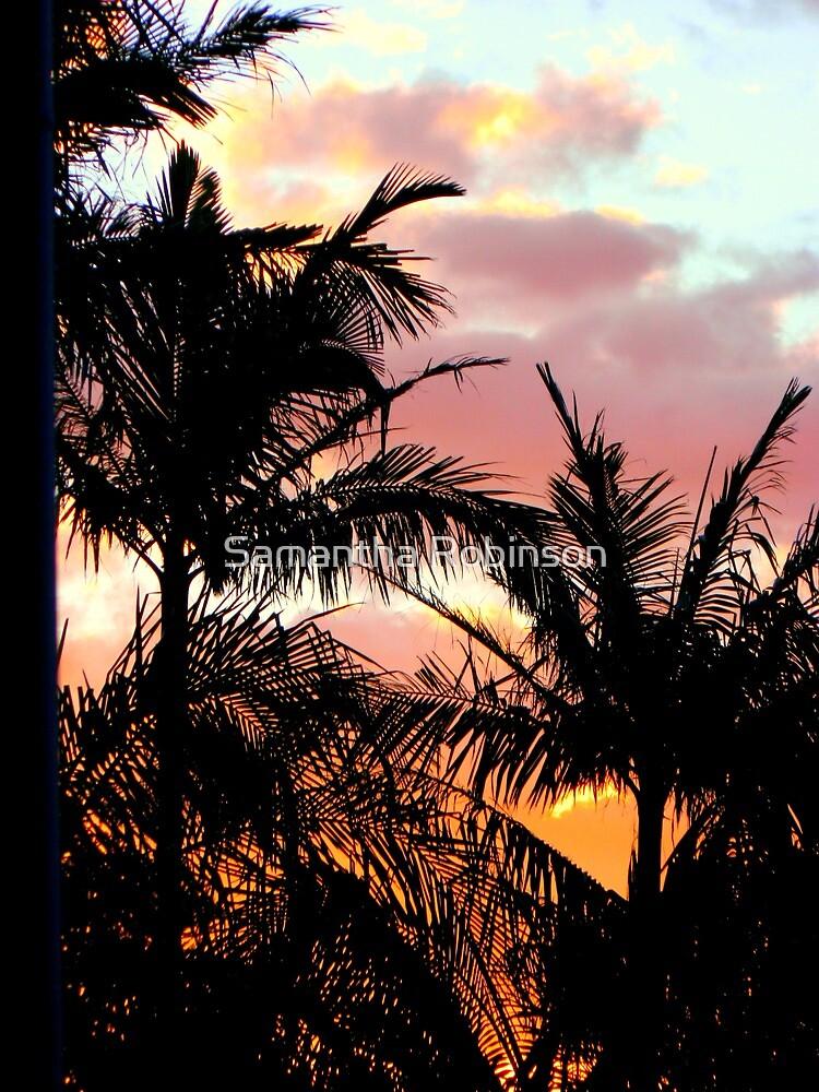 Sunset by Samantha Robinson