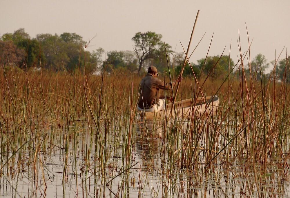 fisherman in the Okavango Delta by supergold