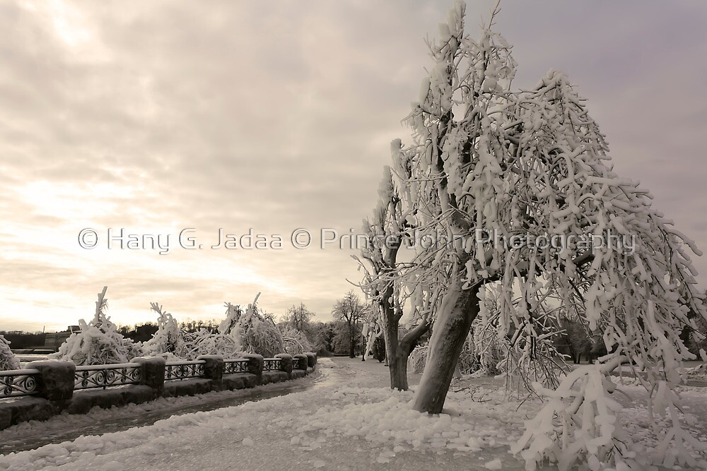 To Everyone On RB - A Very Blessed And Heartful Merry Christmas by © Hany G. Jadaa © Prince John Photography
