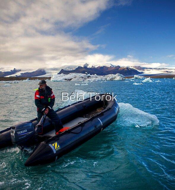 Pulling the Iceberg by Béla Török